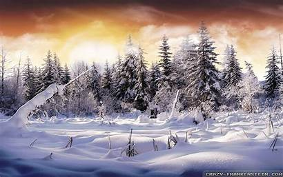 Winter Landscape Wallpapers Scenery Desktop Landscapes Widescreen