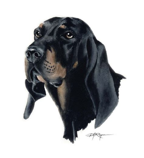 black and tan coonhound 1 dog breeds picture