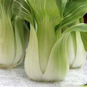 Pak Choi Samen : deaflora mini pak choi short green samen ~ Orissabook.com Haus und Dekorationen