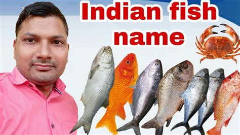top ten indian fishindian fish namesname  indian