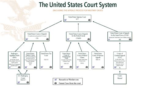 Court System Advocacy Litg Federal Law
