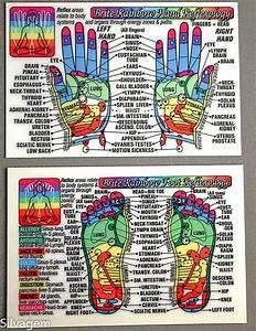 Foot Hand Reflexology Acupressure Code Laminated Wallet