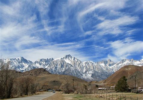 Lone Pine Photos Featured Images