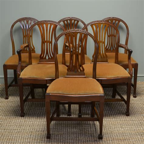 antique dining chair quality set of six hepplewhite design edwardian walnut 1267