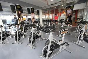 AMERICA FITNESS PARTNERS, INC. (GOLD'S GYM) | Philippine ...