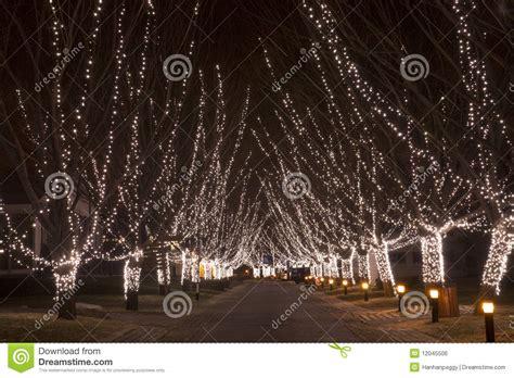 path with christmas lights stock photo image of lights