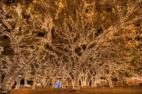 12 best christmas light displays in texas 2016