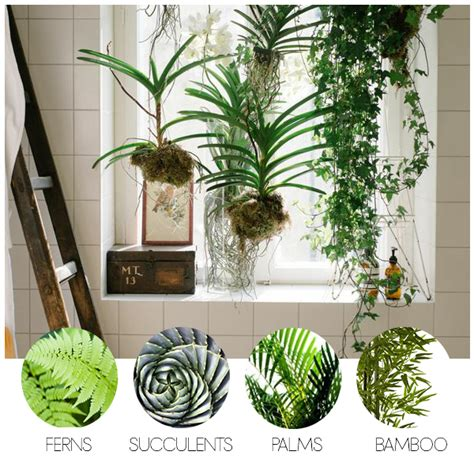 deco bathroom ideas turn your bathroom into an oasis with these indoor