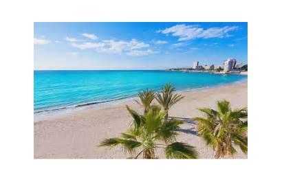 Alicante Beaches Incredible Must Visit Almadraba Postiguet