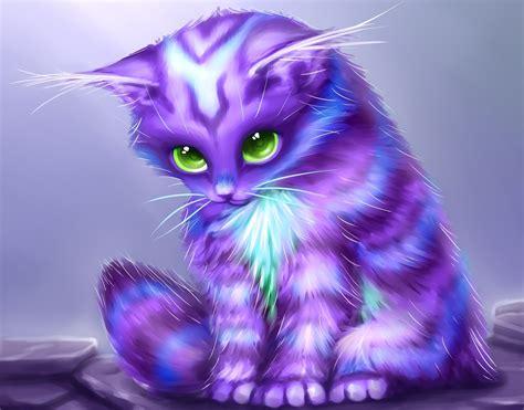 magic cat magical animals cats cat kitten baby