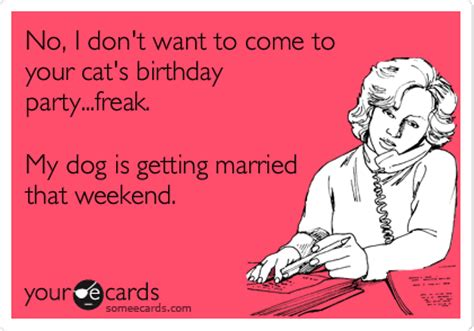 No, I Don't Want To Come To Your Cat's Birthday Party