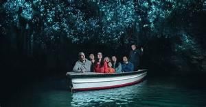 Visite Des Grottes De Waitomo Glowworm