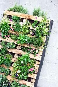 Vertikaler Garten Kaufen : vertikaler garten f r balkon und terrasse aus einer euro ~ Lizthompson.info Haus und Dekorationen