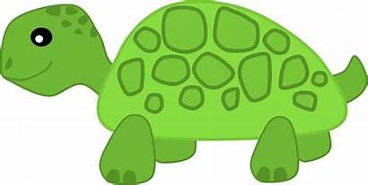 Turtle Clipart Clip Slow Animal Kawaii Transparent