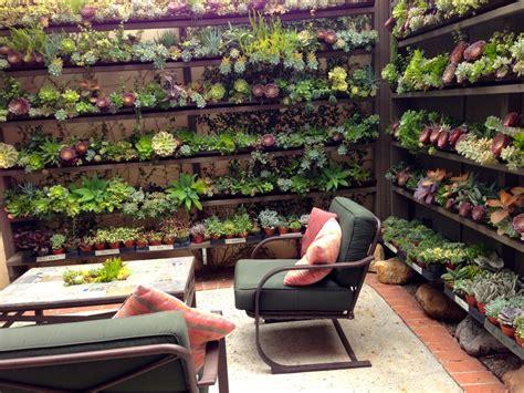 Enjoy a Visit to The Succulent Cafe   Laguna Dirt
