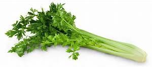 Culture Celeri Branche : une large gamme de l gumes jardins de cr ances ~ Melissatoandfro.com Idées de Décoration