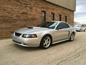 2001 Ford Mustang GT Deluxe 2dr Coupe In East Dundee IL - All Star Car Outlet