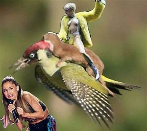 The Internet Had Way To Much Fun With The Weasel Riding
