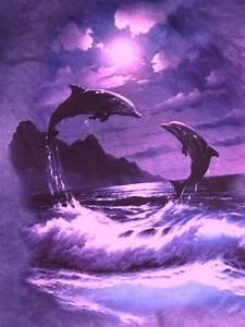 Schöne Delfin Bilder : universo espiritual compartiendo luz la esencia delf n s ntesis del filamento de luz ~ Frokenaadalensverden.com Haus und Dekorationen