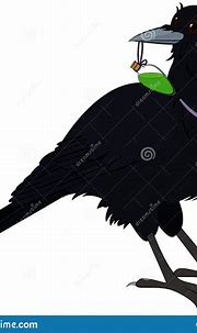 Mystical Raven Bird With Green Poison Isolated On White ...