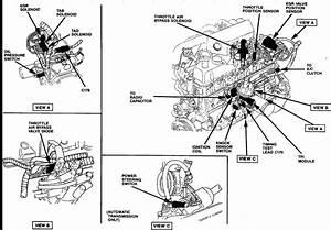 I Have A 1988 F150 4x4 4 9l Automatic  I Get A Check