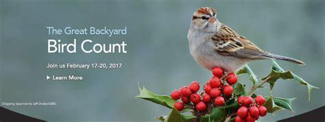 Cornell Great Backyard Bird Count by Birds