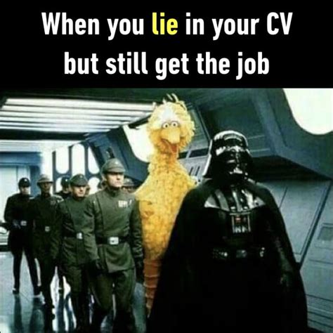 Cv Get Interviews by When You Lie In Your Cv But Still Get The 9gag