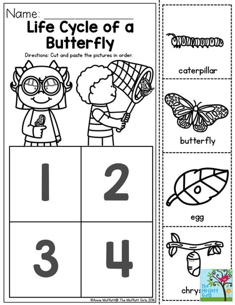 25 best ideas about lifecycle of a butterfly on 912 | 917a80eb9ca832afb431a05d2e96e32a
