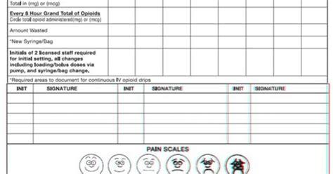 hour nursing flow sheet view  absence report