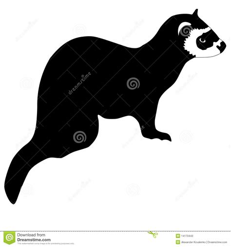photos clipart silhouette of ferret stock photos image 14170443
