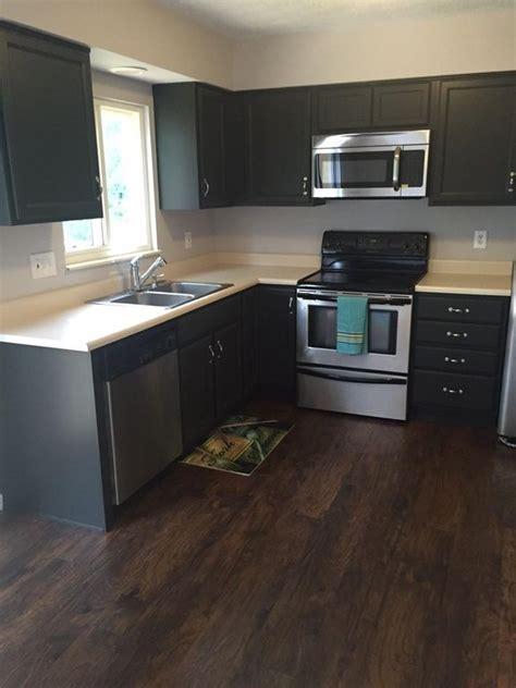19+ Awe-Inspiring Kitchen Remodel Java Cabinets