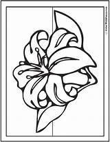 Lily Coloring Pages Spring Stargazer Flowers Lilies Drawing Sheet Printables Pdf Colorwithfuzzy Getdrawings Fun sketch template