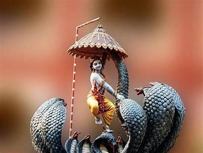 Krishna Lord Kaliya Radha Dolls Shree India