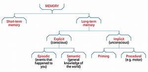 Types Of Memory - Queensland Brain Institute