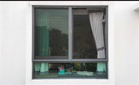 bedroom window insect screen singapore