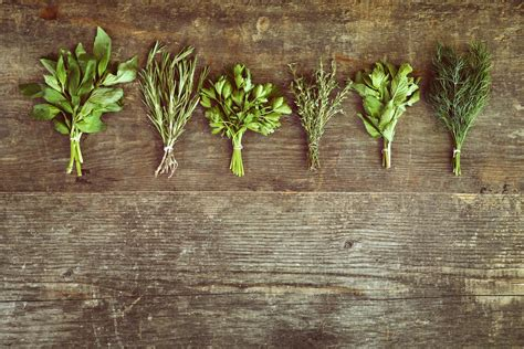 Top Three Scientifically Researched Herbs To Control Blood