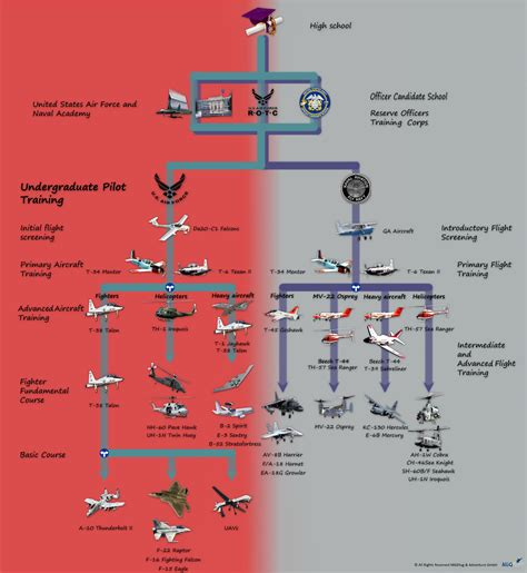 How To Become A Fighter Pilot Infographic