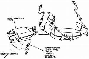 Solved  I Am Looking For A Diagram Of Where The Oxygen