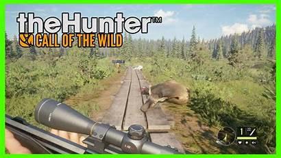 Wild Hunter Call Map Dlc