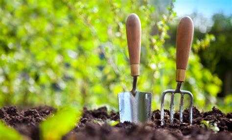 giardino marzo maggio cosa piantare nell orto e nel giardino leitv