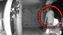 What's Behind Eerie Video of What Looks Like an Alien ...