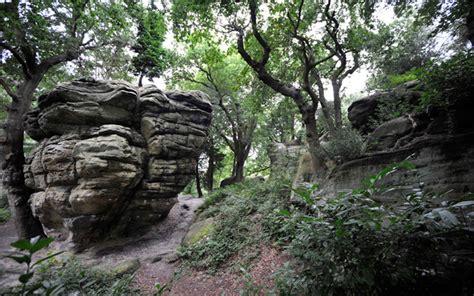 Attractions in Tunbridge Wells Kent - High Rocks