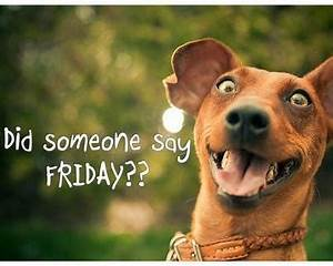 It Friday Funny Quotes. QuotesGram