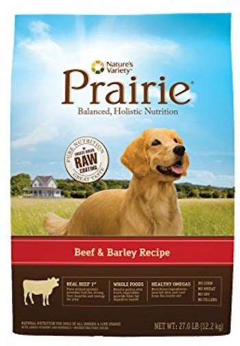 top   dry dog food brands    dog digest