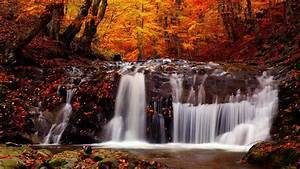 Nature, Landscape, Fall, River, Trees, Waterfall, Wallpapers, Hd, Desktop, And, Mobile, Backgrounds