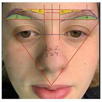 Mapping Makeup Eyebrow Brow Eyebrows Permanent Microblading