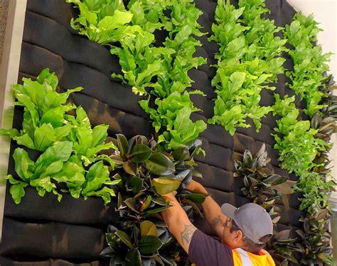 Vertical Garden Plants Interior