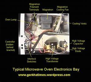 How Microwave Cooking Works  U00ab Gorkhatimes