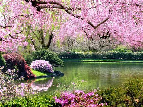 Springtime Of My Heart Islamicity