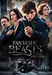 Fantastic Beasts and Where to Find Them | Movie fanart ...